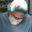 Dr. Charles Hendricks