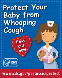 How does whooping cough / pertussis enter your body and what does it do to you?