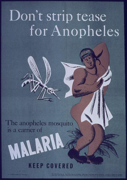 How long malaria can proceed in the body?
