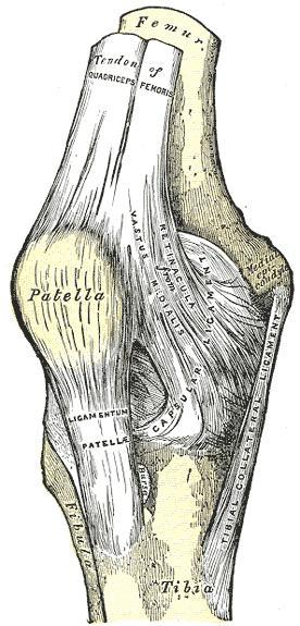 What to do if I have a torn meniscus in my knee?