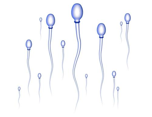 Is my sperm production low