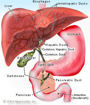 What are common symptoms for gallbladder problems?