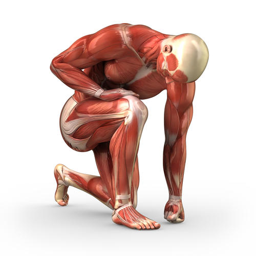 What are good exercises for strengthening quad muscles?