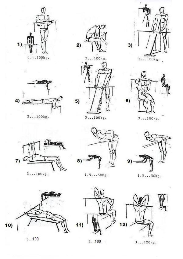 What Is The Proper Way To Exercise Your Lower Back Without Straining Muscles Or Injuring