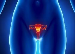 Could you please give me details on ovarian cancer and how often it is for women to have?