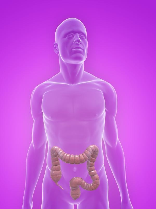 How can  one get screened for intestinal cancer?