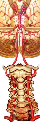 Question about the treatment of vertigo due to cervical spine?