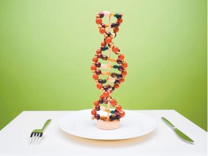 How high is the percentage of obesity is caused by genes?