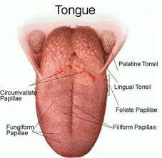 Is it unusual to have a pimple on your tongue?