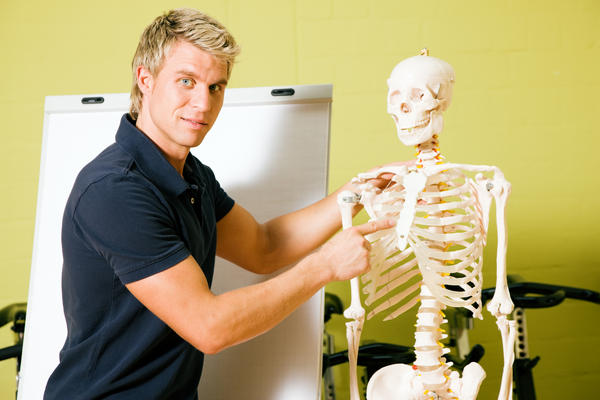 What is an eco skeleton?  How could you strain it?