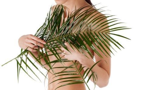 Want breast enlargement herbs, and where are the available?
