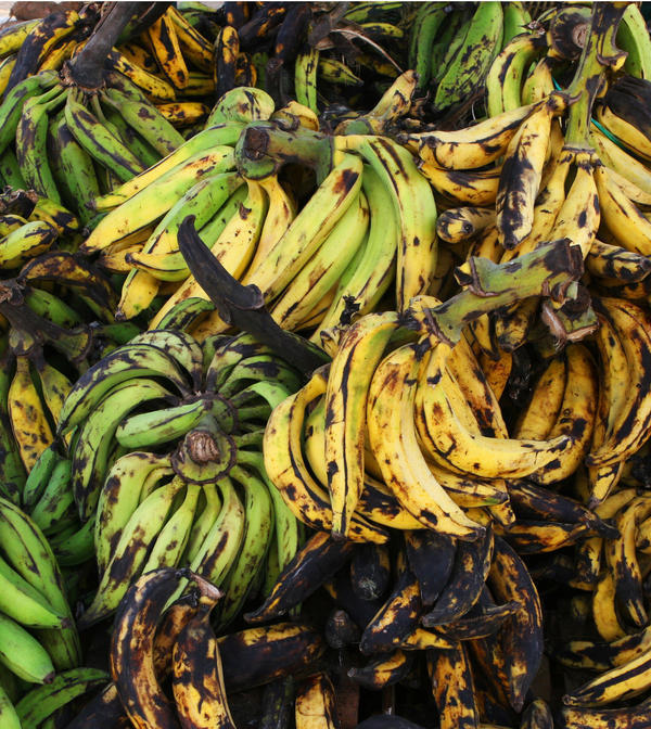 How can  low potassium levels cause heart problems?
