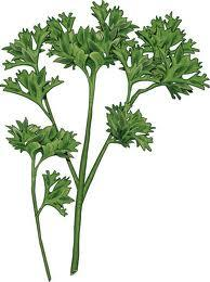 Does the juice of parsley really helps of flashing out toxins in the kidney?