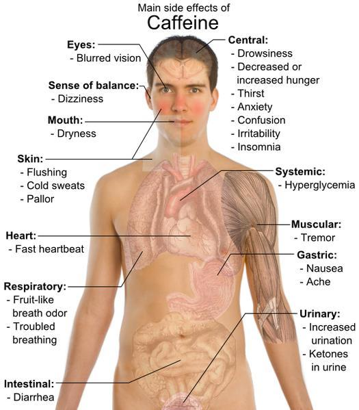 Can you please describe the effects of caffeine on the human body?