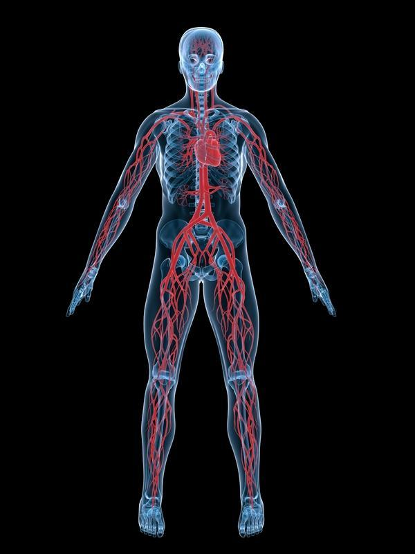 What is it called when arteries and veins are not in the correct anatomical position?