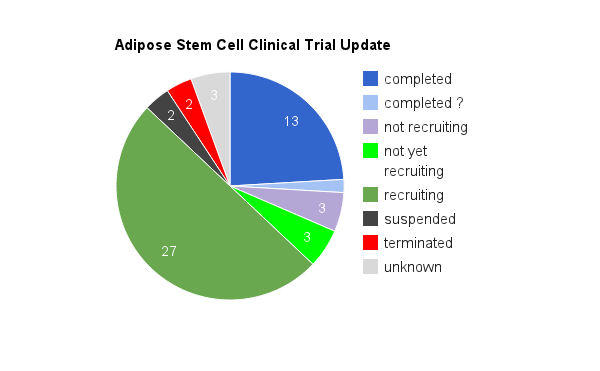 Advantages And Disadvantages Of Stem Cell Research - Doctor ...