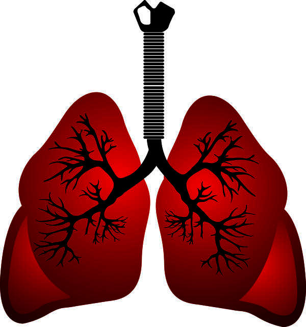I'm just wondering, if you were to get lung cancer then what proffessionals would you deal with?