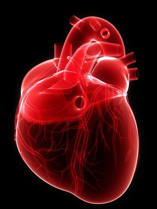 I recently have stabbing chest pain and I remembered that my parents told me that I had hole in the heart syndrome, it is affecting me now?