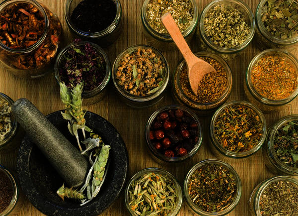 How can you become a holistic medicine practitioner?