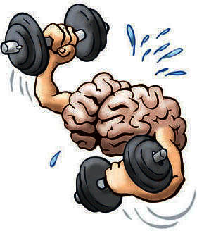 Top brain exercise that will make it function better?