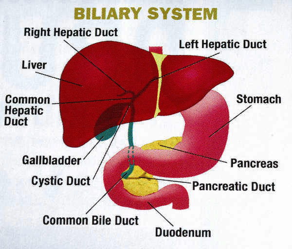 Does gall bladder pain hurt worse when laying down?