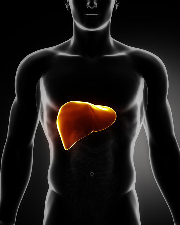 What does enlarged fatty liver grade II mean is it curable?