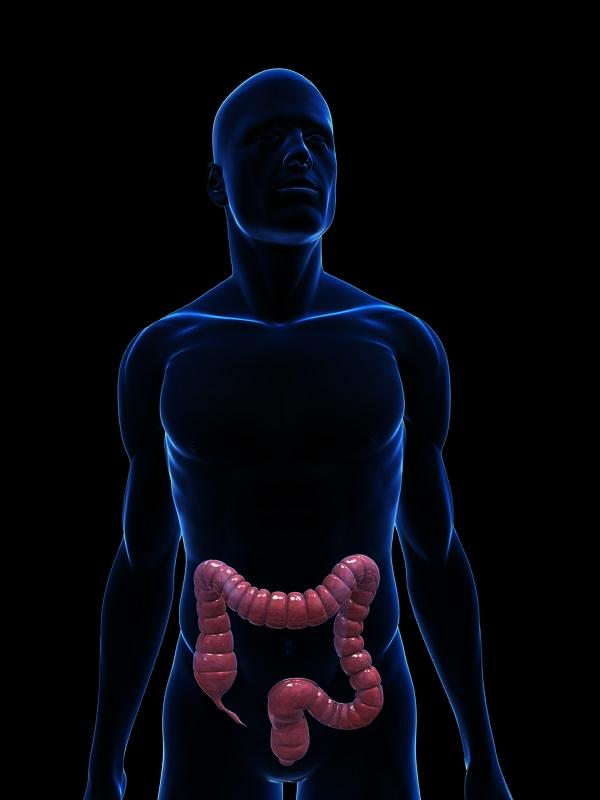How many days after colonoscopy should I have bowel movement?