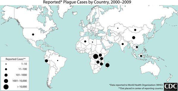 How many cases a year of the plague occur in the world?
