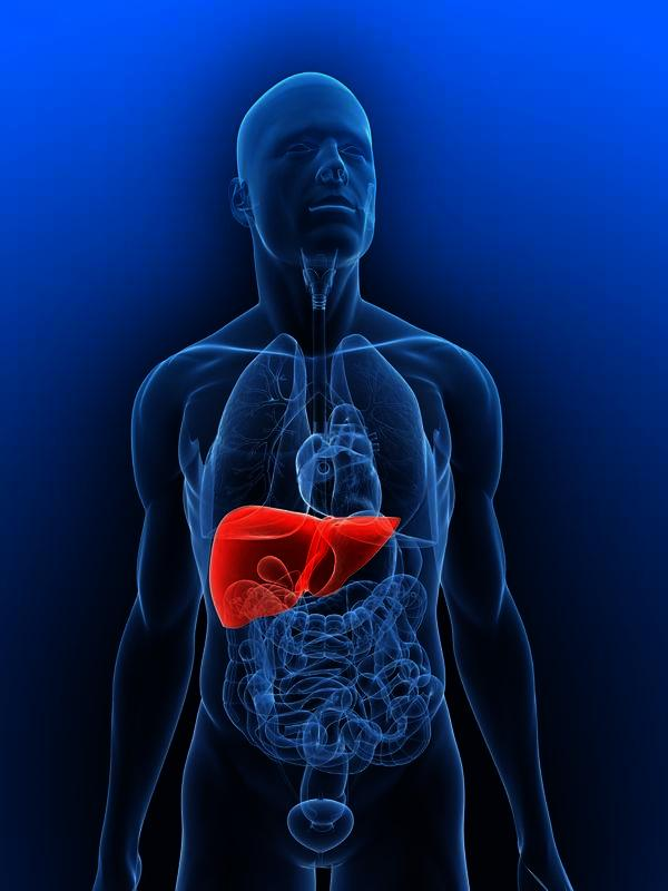 Is it possible to lose enough weight for a fatty liver to go back to normal?