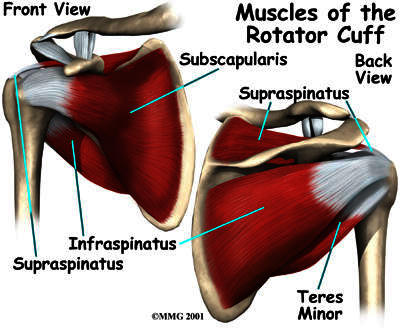 What treatment is there for rotator cuff tear?