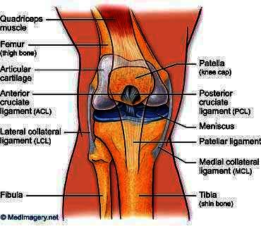 If a man can live simple daily life with torn ACL ligament if he is not a sportperson?