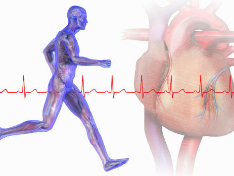 I have been getting heart palps while running. Usually they happen when i run under an 8 minute mile. I had holter, was normal. Should i be worried?