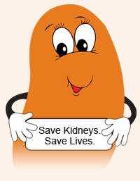 What can we do to help our 4 yr old with nephrotic syndrome?