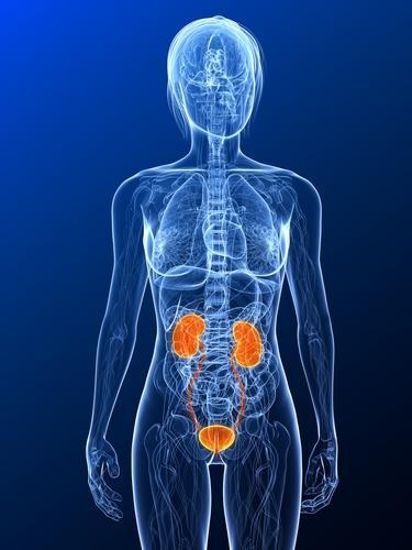 What causes urinary tract infection?