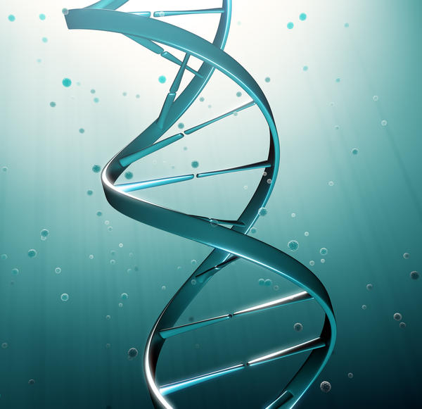 There is a gene you can have that makes you more likely to get breast and ovarian cancer that is hereditary. What gene is that?