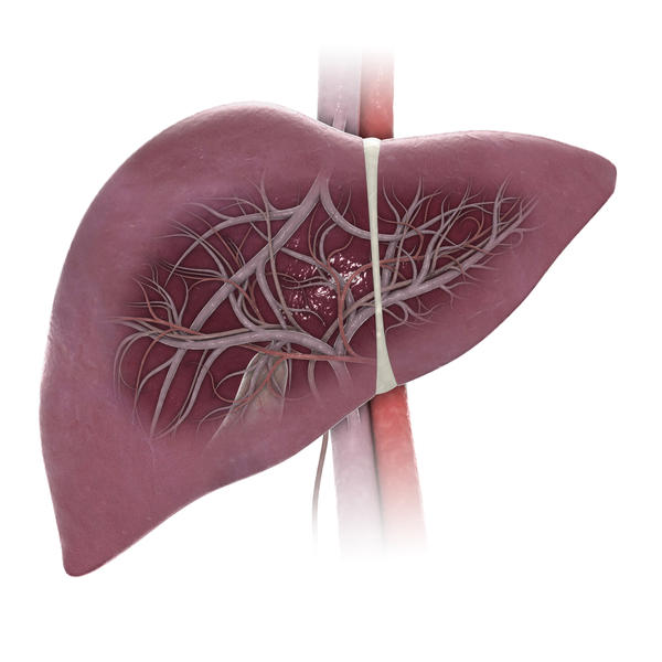 How can you test yourself for a enlarged liver?