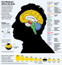 How marijuana effects people?