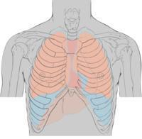 I'm having sharp pains on the left side of my chest near my ribs what could it be?