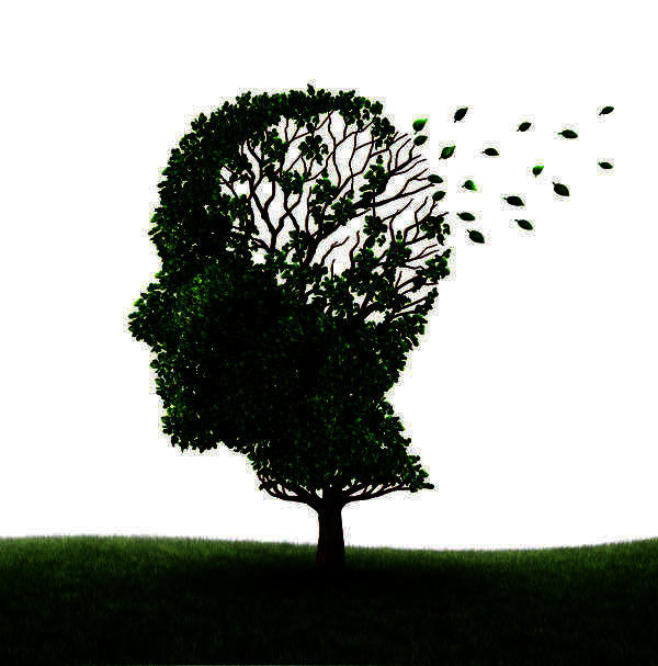 Any tips on how to keep your brain functioning at its best?