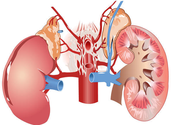 Can you have surgery with kidney disease? My father needs a hip replacement, but had liver disease.