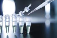 How are adult stem cells and embryonic stem cells different?