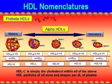 What is the definition or description of: HDL cholesterol?