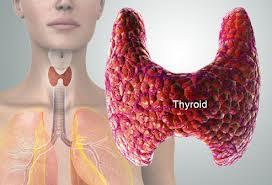 What to do if I had enlarged thyroid and abnormal thyroid studies?