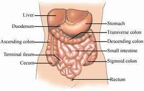 Can constipation cause pain on lower abdomen?