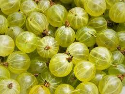 Are gooseberries ok while pregnant?