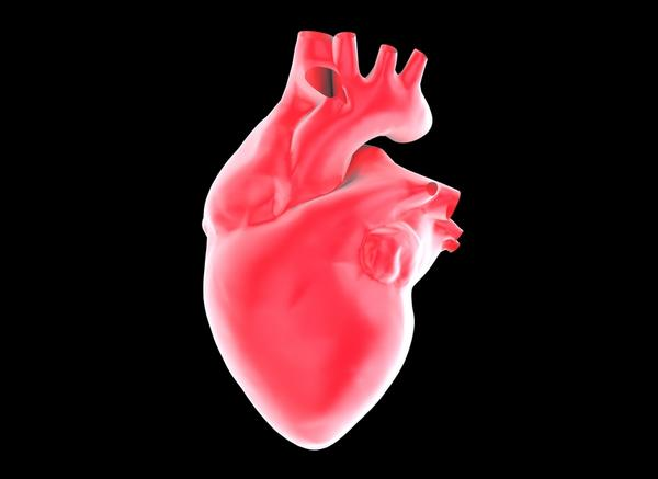 Just a general question. Can the left side of your heart be smaller than the right. Assuming thickness, and the heart function is normal?