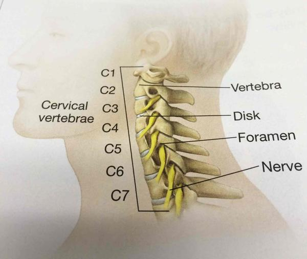 Can cervical spine inflammation cause fever?
