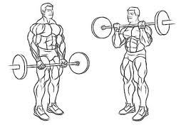 Can you tell me what is the best exercise for a mesomorph?