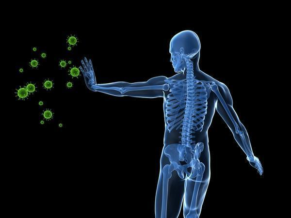 Hib vaccine doses?