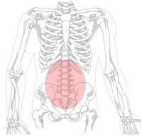 How long does a sciatic nerve pain lasts?